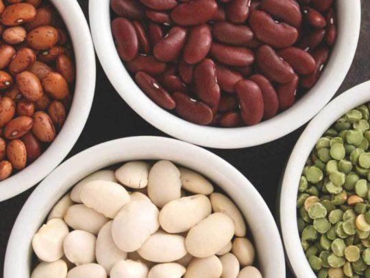 Семена бобовых культур