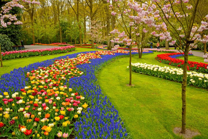Keukenhof-Gardens-Lisse-Netherlands